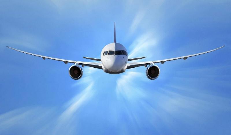 """深圳机场:空运进口生鲜食品可在""""空运申报""""当天放在深圳空运公司的餐桌上"""